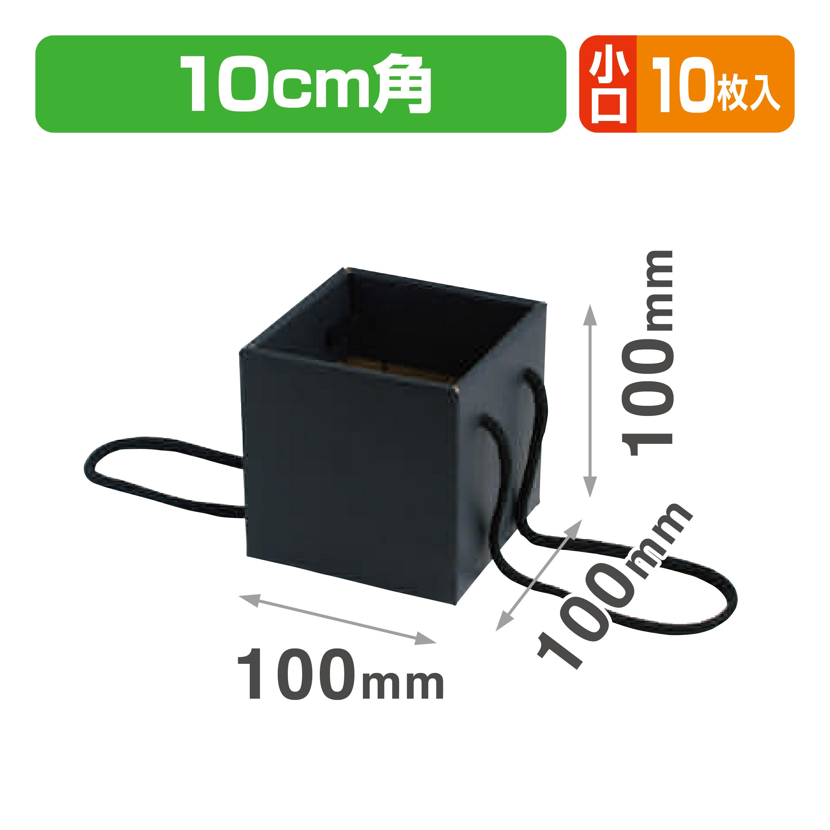 ミニブーケキャリー100(ブラック) 小口