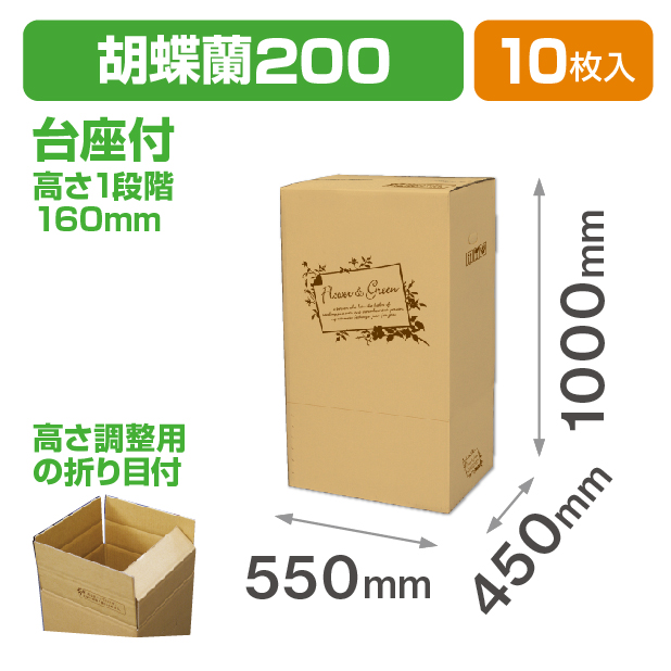 フラワー&グリーン 胡蝶蘭200